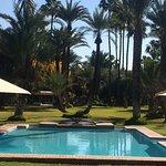 Esta es la piscina y parte del jardín