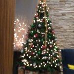 Holidays tree