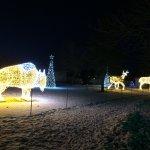 Photo de Magnetic Hill Zoo