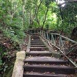 Omar Lombok Guide Photo