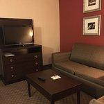 Φωτογραφία: Holiday Inn Hotel & Suites Raleigh - Cary