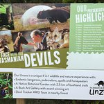 Unzoo - see the timings of activities to plan your visit