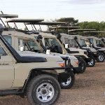 Some of WAS 4WD Safari vehicles with open up roof
