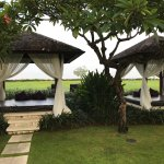 Gazebos for yoga and rest.