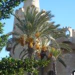 Photo of Carthageland Hammamet