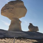 one of the grest sculptures in the white desert