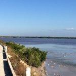 Laguna Rosada