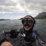 Surfacing from a dive on the Atlantic Seaboard