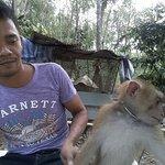 Foto de Thong Nai Pan Noi