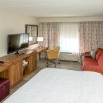 Hampton Inn & Suites Tampa Busch Gardens Area