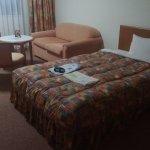 Tonami Royal Hotel Foto
