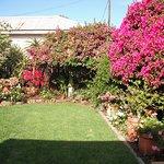 Lovely gardeb area