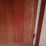 TA_IMG_20171224_213020_large.jpg