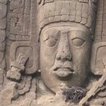 Intricate carvings at Quirigua in Guatemala are more than just for the birds!