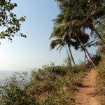Дорожка к тому скрытому пляжу