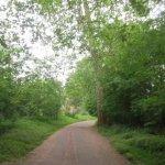 Foto de Bois de Boulogne