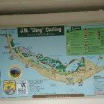 """J.N. """"Ding"""" Darling National Wildlife Refuge"""