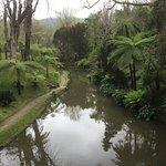Foto di Terra Nostra Garden Hotel