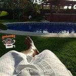 Snapchat-1596187962_large.jpg