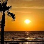 Photo of Sea Shells Beach Club