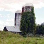 Photo of Saratoga Farmstead B&B
