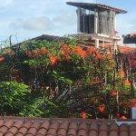 Foto de Paracuru Kite Village