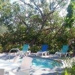 Billede af Coconut Mallory Resort And Marina