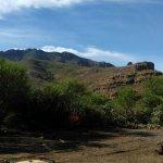 Timeless Baja의 사진