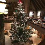 Christmas tree in center of lodge