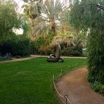 View of Garden of Palmer Palm Springs from near door to Counter Reformation