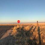 Photo of Antelope Island State Park