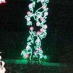 Φωτογραφία: ABQ BioPark Botanic Garden