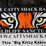 ภาพถ่ายของ Catty Shack Ranch Wildlife Sanctuary