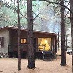 cabaña 2... en medio del pinar