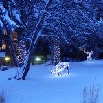 FairmontHS Christmas lights-lighted deer