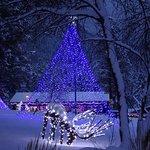 FairmontHS Christmas lights-deer