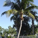 Photo of Fairfield Inn & Suites West Palm Beach Jupiter