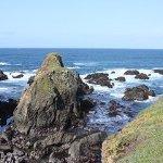 Photo of Emerald Dolphin Inn & Mini Golf