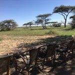 Bild från Mbuzi Mawe Serena Camp