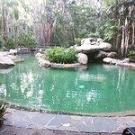 Foto Kewarra Beach Resort & Spa