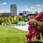 Palas Park in the summertime