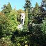 Flowerpot tower peeking through the trees