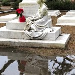 great reflexion in rain water