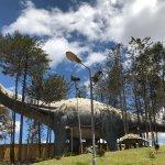 Dinosaur Tracks (Cal Orck'o) Foto