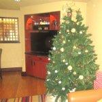 Christmas Tree, Lobby, Larkspur Landing, Folsom, CA