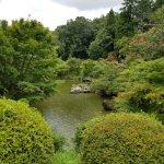 lots of pond views