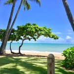 Foreshore Palm Cove