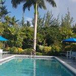 Photo de The Palm Garden Hotel