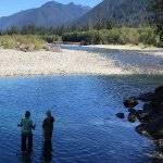 Fishing the upper Quinault River