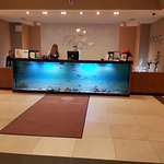 Live Tropical Fish tank at Reception Desk/Lobby